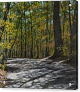Afternoon Shadows - Oconne State Park Acrylic Print