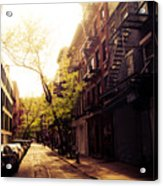 Afternoon Sunlight On A New York City Street Acrylic Print by Vivienne Gucwa