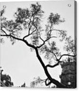 Afternoon Thien Mu Pagoda Acrylic Print