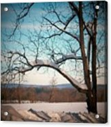 Afterr The Blizzard Acrylic Print