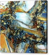Agate Geode Acrylic Print
