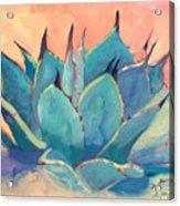 Agave 2 Acrylic Print