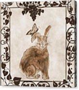 Aged Bunny Acrylic Print by Eva Thomas