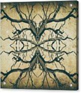 Aged Sepia Tree Dual Acrylic Print