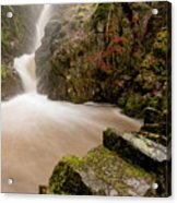 Aira Force High Water Level Acrylic Print