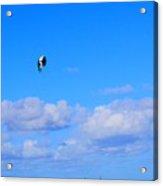 Airborne Kitesurfer  Acrylic Print