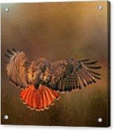 Airbrakes Acrylic Print
