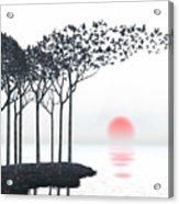 Aki Acrylic Print by Cynthia Decker
