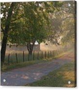 Alabama Country Road Acrylic Print by Don F  Bradford