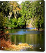 Alafia River Acrylic Print