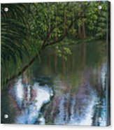 Alafia River Reflection Acrylic Print