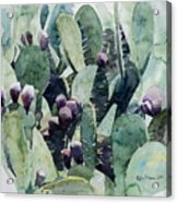 Alamo Prickly Pear Acrylic Print by Jeffrey S Perrine