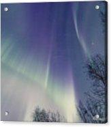 Alaska Aurora Borealis Acrylic Print