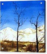 Alaska Blue Sky Day  Acrylic Print