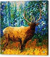 Alaskan Elk Original Madart Painting Acrylic Print