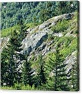 Alaskan Wilderness Acrylic Print