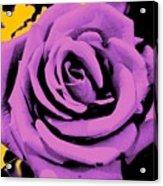 Alchemy Rose Acrylic Print
