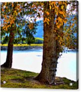 Alder Lake In The Fall Acrylic Print