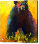 Alert - Black Bear Acrylic Print