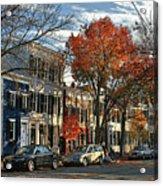Alexandria Street Acrylic Print