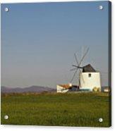 Algarve Windmill Acrylic Print by Heiko Koehrer-Wagner