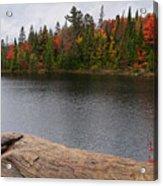 Algonquin Provincial Park Ontario Acrylic Print