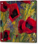 Alicias Poppies Acrylic Print