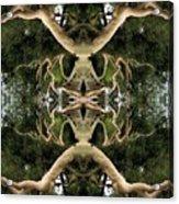 Alien Birth Acrylic Print