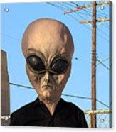 Alien Face At 6th Street Bridge Acrylic Print