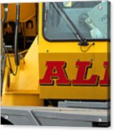 All Crane All The Time Acrylic Print
