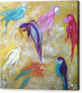 All Dressed Up - Parrots Acrylic Print