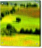 All Green Acrylic Print