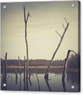 All Is Calm At Green Bottom Acrylic Print