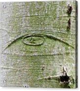 All-seeing Eye Of God On A Tree Bark Acrylic Print