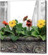 Allen Garden - Toronto Acrylic Print