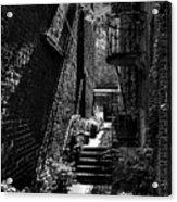 Alley Garden Acrylic Print