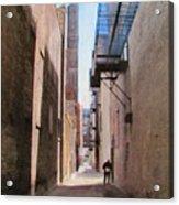 Alley W Guy Reading Acrylic Print
