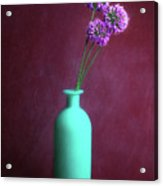Allium Medusa Flower Acrylic Print