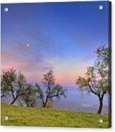 Almonds And Moon Acrylic Print