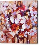 Almonds Blossom  5 Acrylic Print
