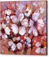 Almonds Blossom  8 Acrylic Print