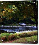 Almost Autumn Acrylic Print