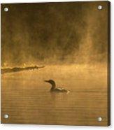 Alone In The Morning Fog Acrylic Print