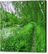 Along Creek #g1 Acrylic Print