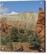 Along Panorama Trail Acrylic Print