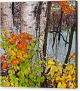 Along The Breezeway In Autumn 2014 Acrylic Print
