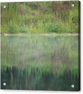 Along The Edge Of The Pond Acrylic Print