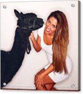 Alpaca Emily And Breanna Acrylic Print