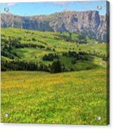 Alpe Di Siusi - Dolomiti Acrylic Print