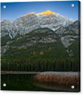 Alpenglow Over Frosty Reeds Acrylic Print
